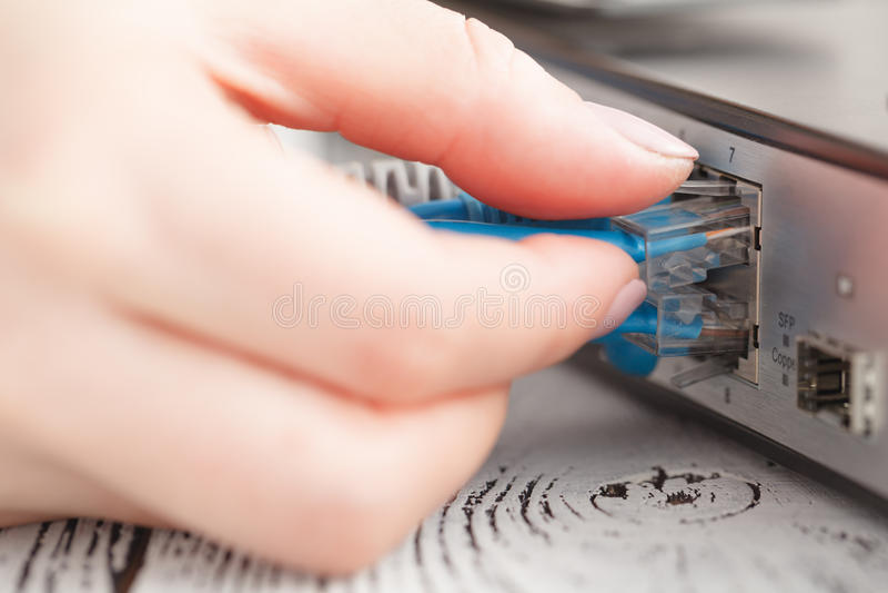 Wkłada sieci łaty sznur w lan kolektoru zmianie zdjęcia stock
