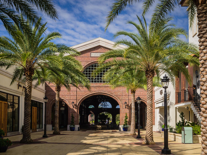 Wlaking the Mall with Palm Trees Before The Crowd royalty free stock photo