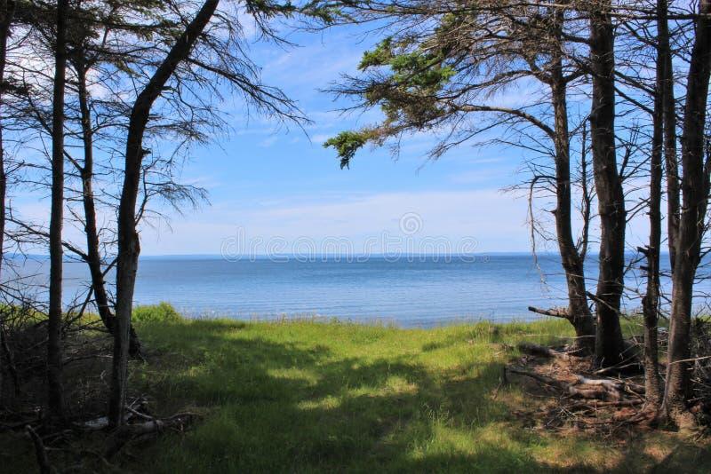 Wlec prowadzić z drewien plażowy pobliskiego Peter Świątobliwy nowa Scotia na pięknym letnim dniu obraz royalty free