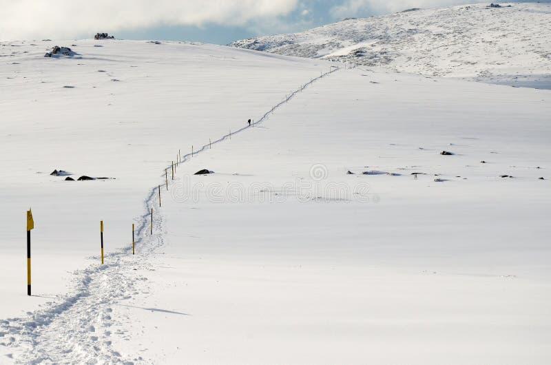 Wlec w śnieg zdjęcia royalty free