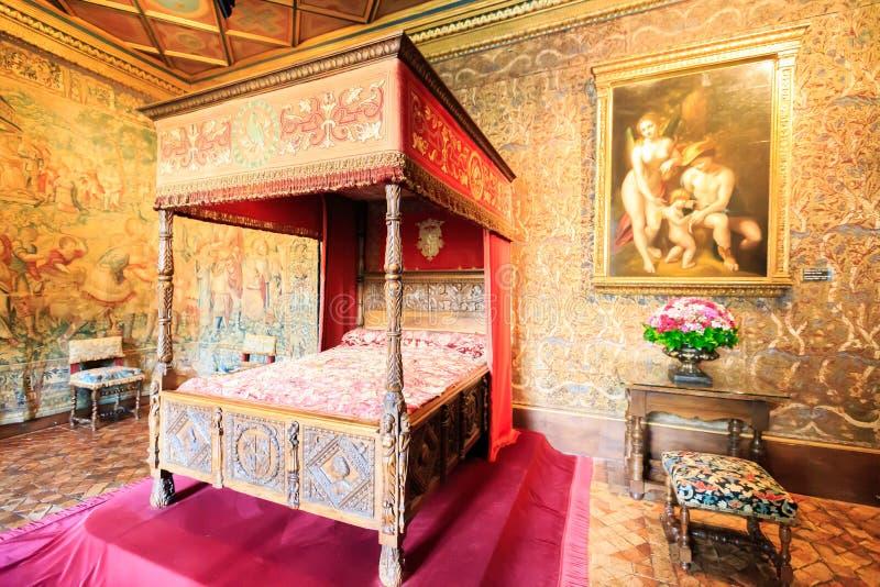 Wnętrze Loire doliny kasztel obraz royalty free