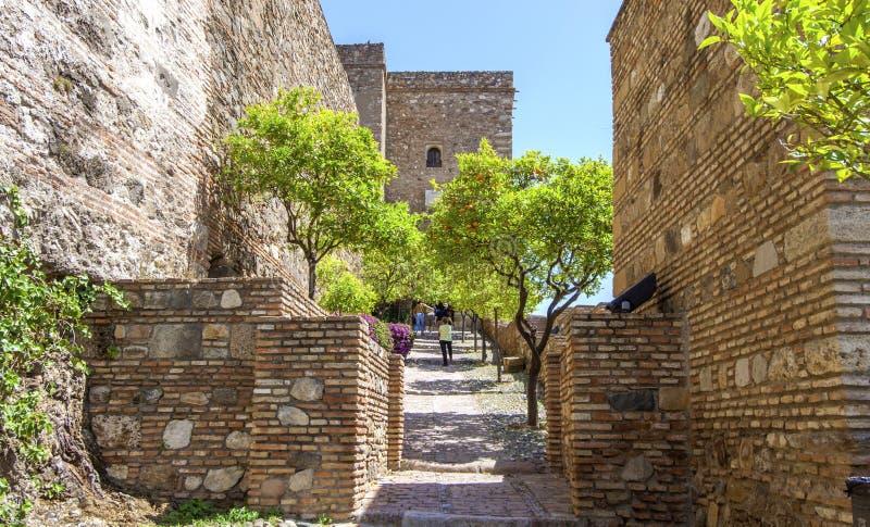 Download Wnętrze Alcazaba Malaga, Hiszpania Obraz Stock - Obraz złożonej z fortyfikacja, fontanna: 41954545