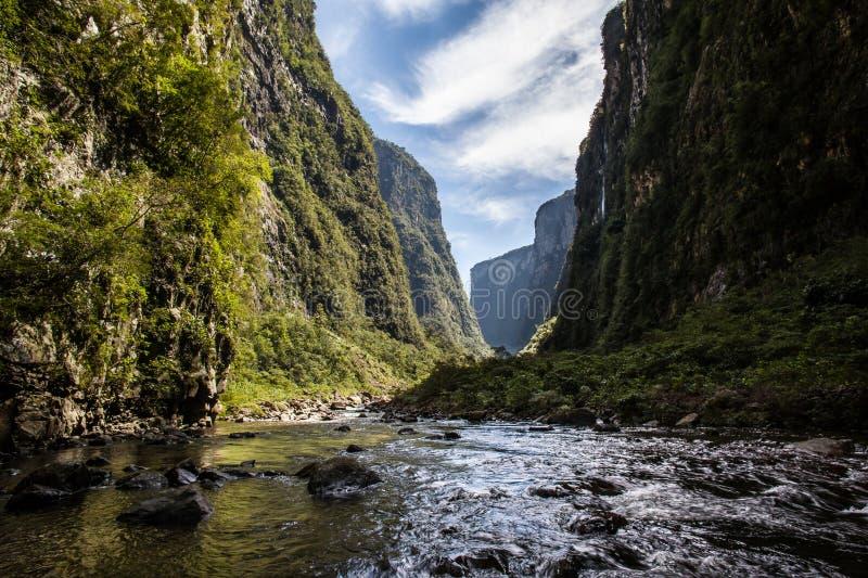 Wołowa rzeka przy Canion Itaimbezinho, Aparados da Serra Nat parkiem, - obrazy stock