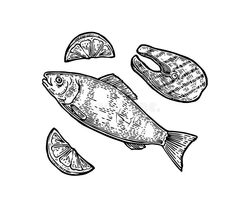 Wołowina piec na grillu rybiego stek z cytryna odgórnym widokiem royalty ilustracja