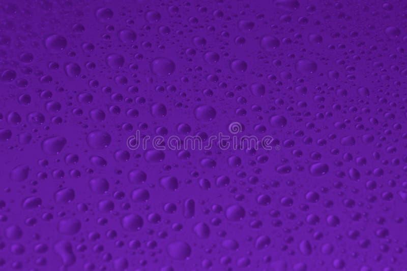 Wod krople na fiołkowej koloru tła teksturze obraz stock