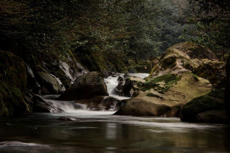 Woda dzika moutain rzeka spada od mech zakrywających kamieni obraz royalty free