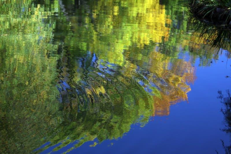 Woda dzwoni na stawie zdjęcia stock