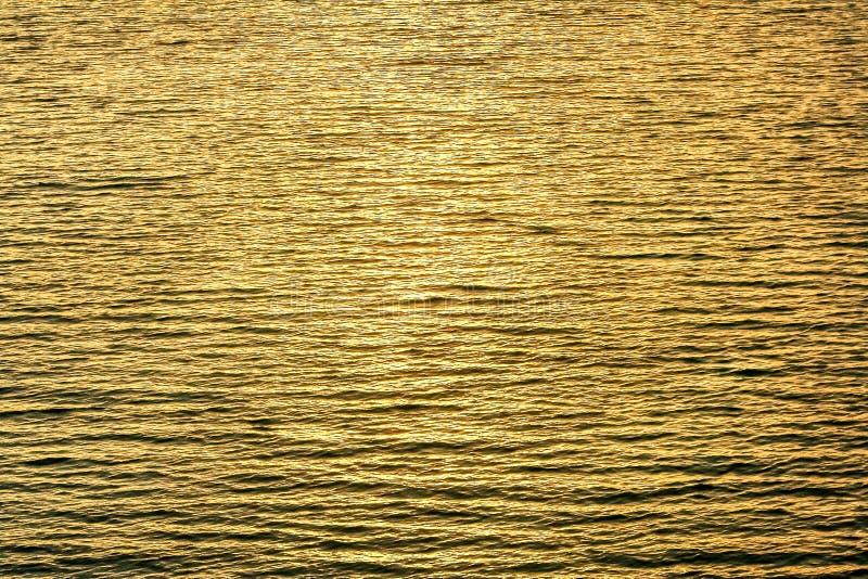 Woda pluskocze w jeziorze w wieczór z złocistymi sunrays odbiciami, natury tło obraz royalty free