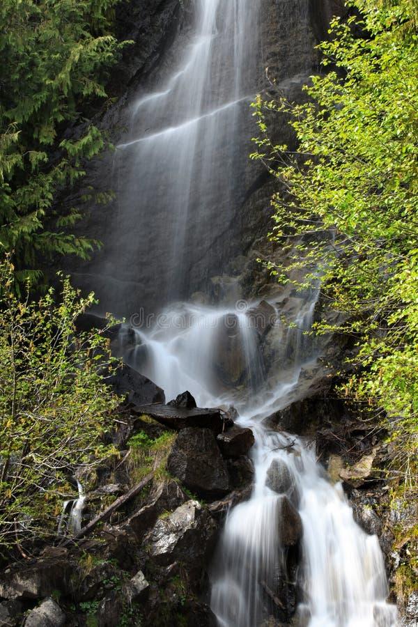 Woda spada w góra Dżdżystym parku zdjęcie royalty free