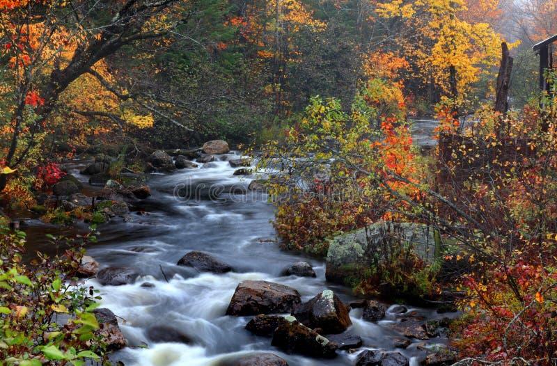 Woda spada w wiejskim Quebec w jesień czasie zdjęcie stock