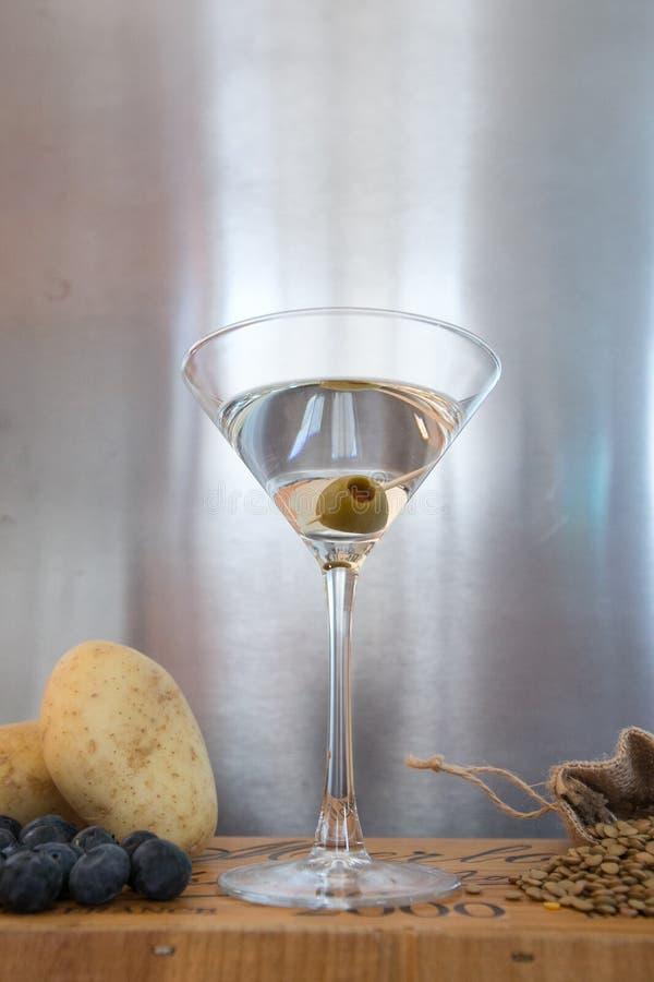 Wodka martini met natuurlijke ingrediënten die het omringen royalty-vrije stock fotografie