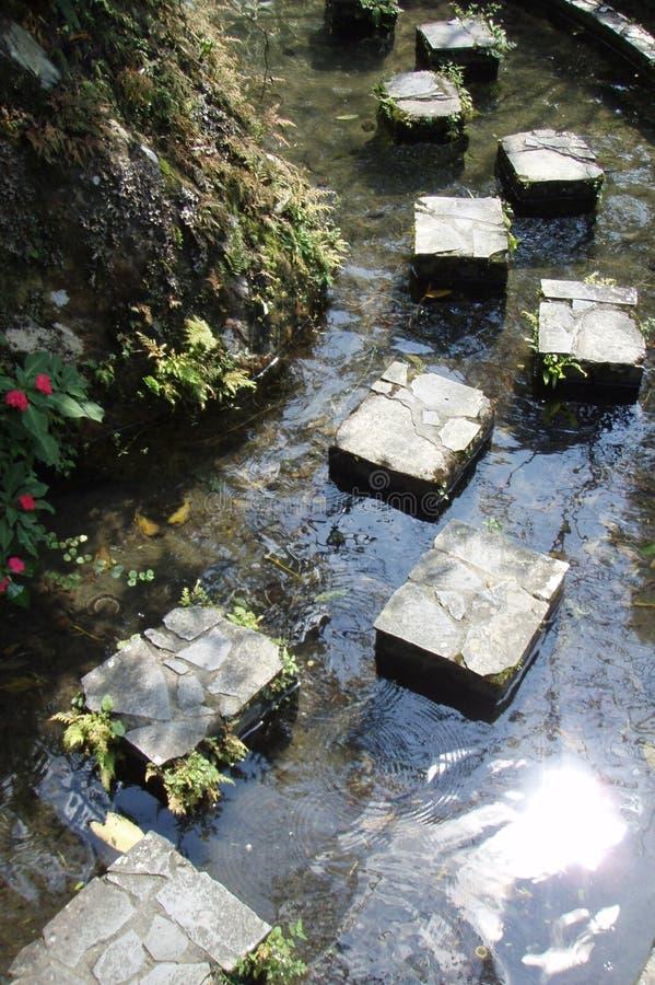 wodna ścieżka obrazy royalty free