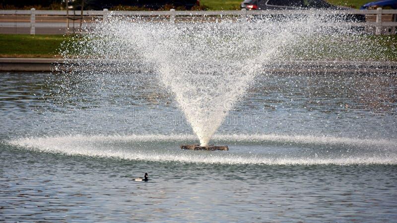 Wodna fontanna zdjęcie royalty free