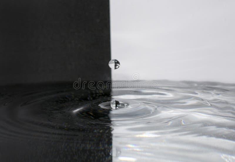 Wodna kropla na czarny i biały tle zdjęcie royalty free