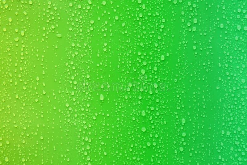 Wodna kropla na zielonego koloru gradientu tle zdjęcia royalty free