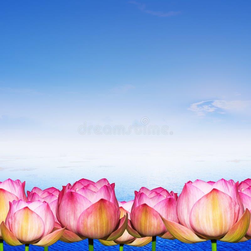 Download Wodna Leluja Na Wody I Niebieskiego Nieba Tle Ilustracji - Ilustracja złożonej z natura, strona: 41954948