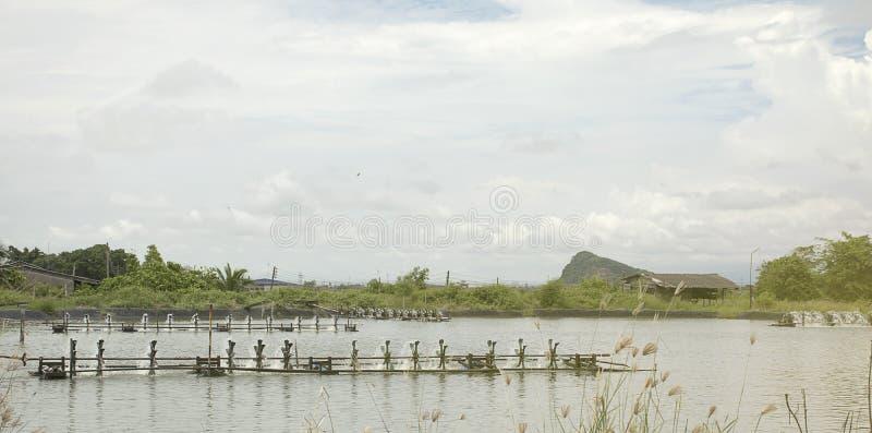 Wodna napowietrzenie turbina w uprawiać ziemię nadwodny Garneli i ryba wylęgarni biznes obrazy stock
