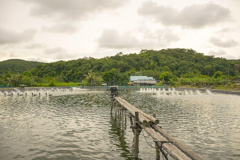 Wodna napowietrzenie turbina w uprawiać ziemię nadwodny Garneli i ryba wylęgarnia obrazy stock