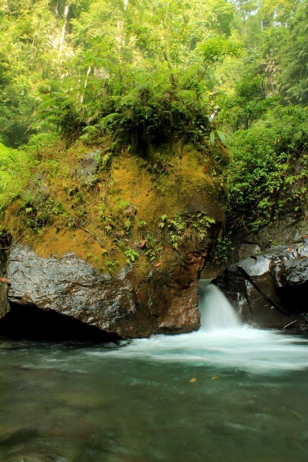 Wodna rzeka zdjęcia stock
