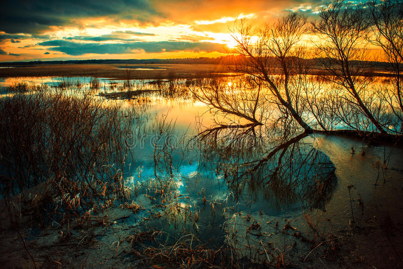 Wodna sceneria zdjęcie royalty free