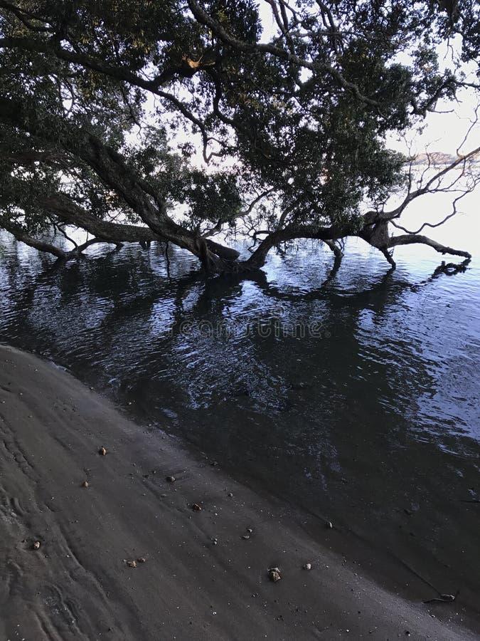 Wodna strona zdjęcie stock
