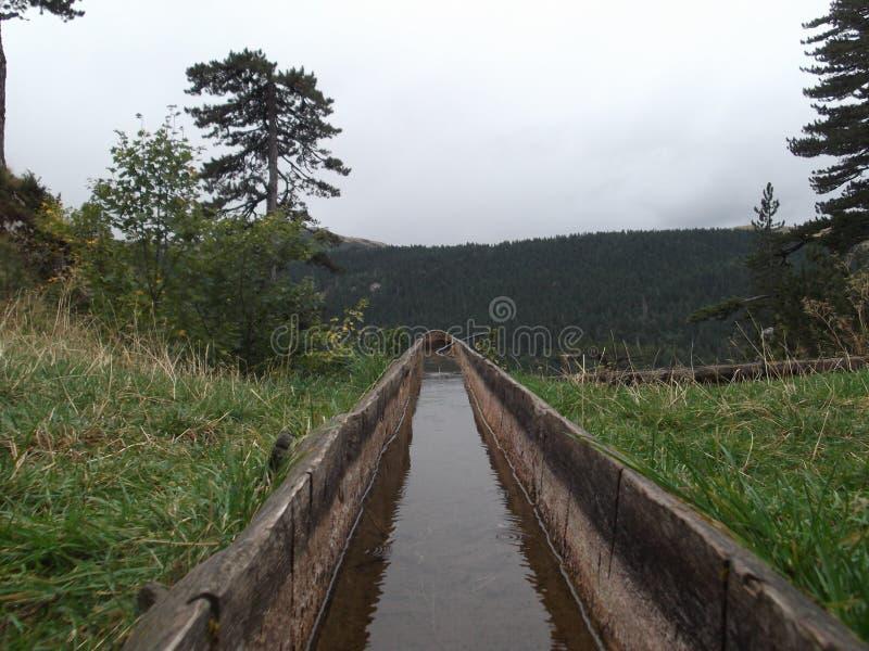 Wodna synklina zdjęcia stock