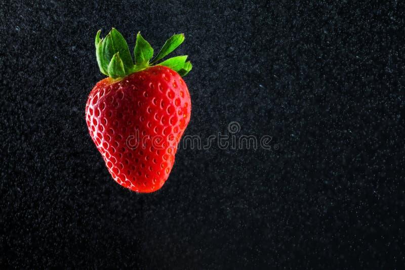 Wodna truskawka na czerni obraz stock