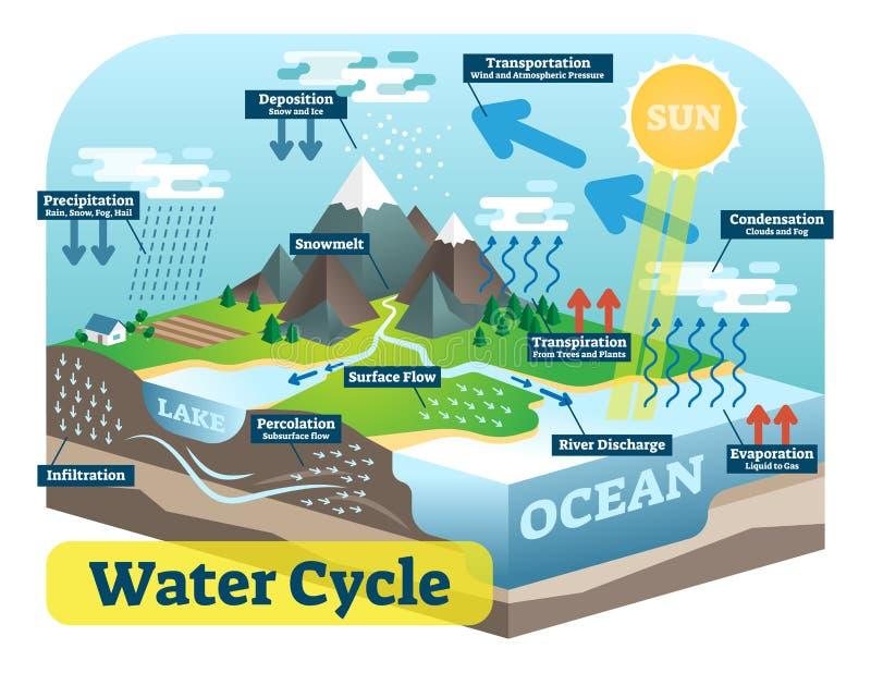 Wodnego cyklu graficzny plan, wektorowa isometric ilustracja