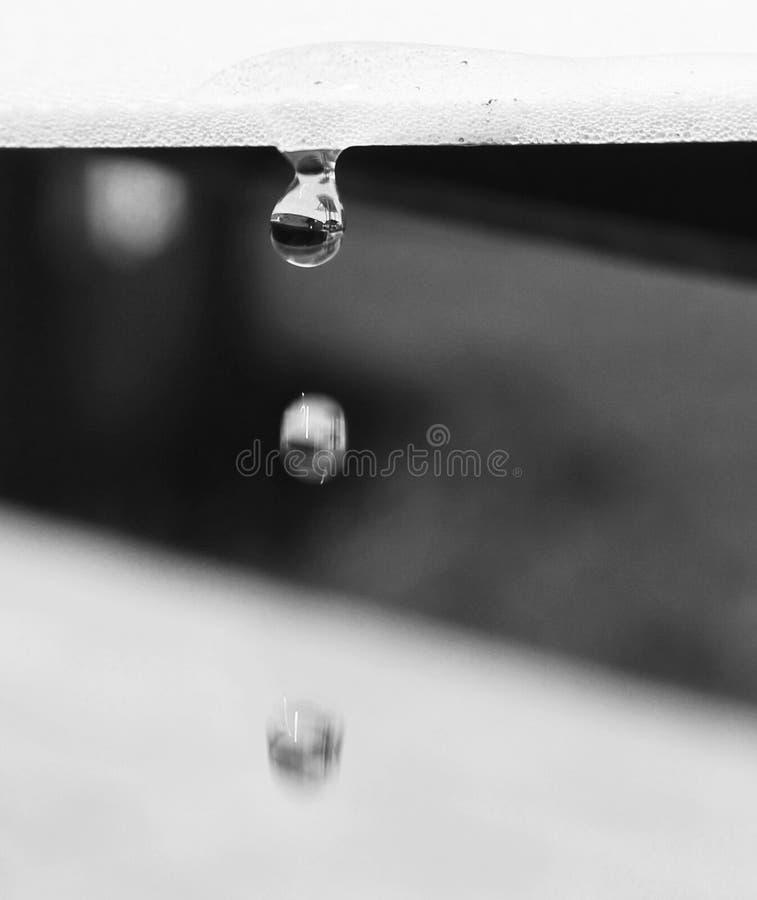 3 wodnej kropelki w czarny i biały zdjęcie royalty free