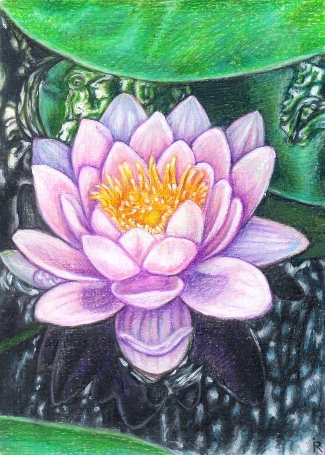 Wodnej lelui lotos w głównych atrakcjach ilustracja wektor