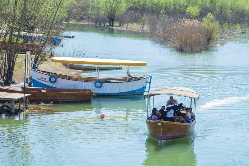 Wodniactwo na Skadar jeziorze na pogodnym wiosna dniu fotografia royalty free