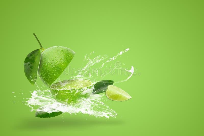 Wodny che?botanie na ?wie?ym zielonym wapnie odizolowywaj?cym na zielonym tle zdjęcia royalty free