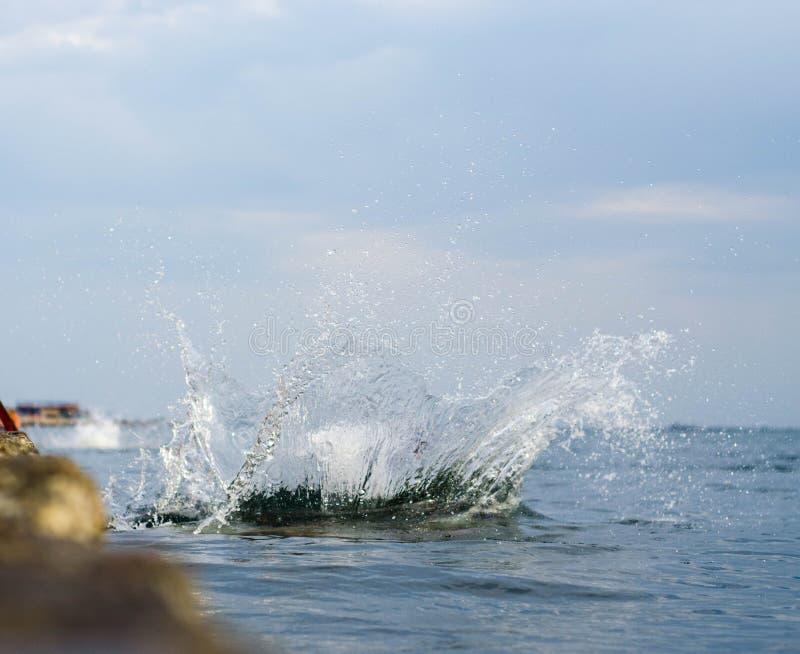 wodny chełbotanie na morzu obraz royalty free