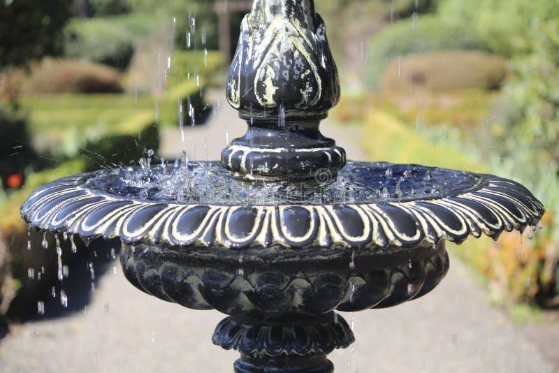 Wodny ciurkanie nad fontanną na słonecznym dniu przy brzeg akrów stanu parkiem, Oregon zdjęcia royalty free