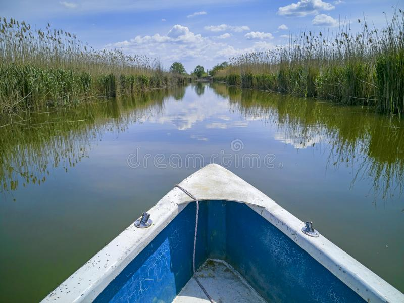 Wodny kanał między płochami obraz royalty free