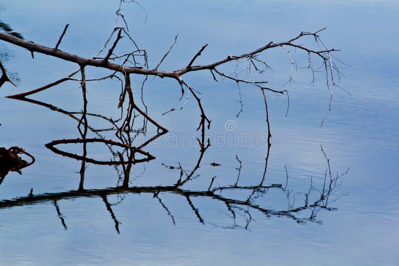 Download Wodny odbicie zdjęcie stock. Obraz złożonej z naturalny - 41950346