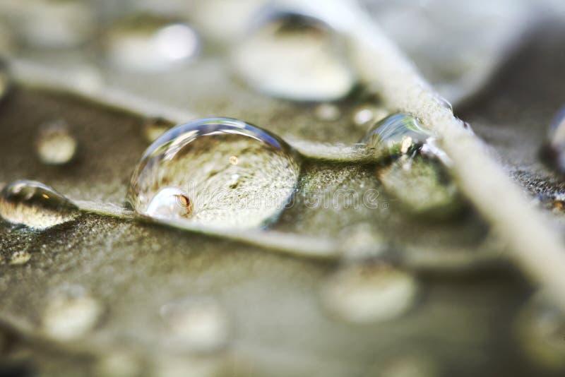 Wodny opadowy makro- fotografia stock