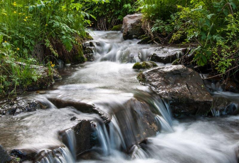 Wodny strumienia spływanie na skałach obraz royalty free