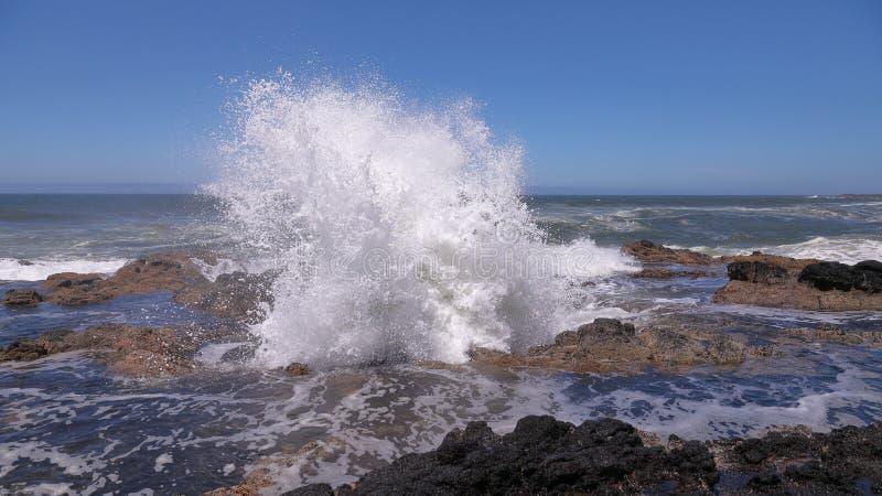 Wodny wybuchać od Dobrze Thor - naturalnej cios dziury przy Oregon wybrzeżem blisko Yachats zdjęcie stock