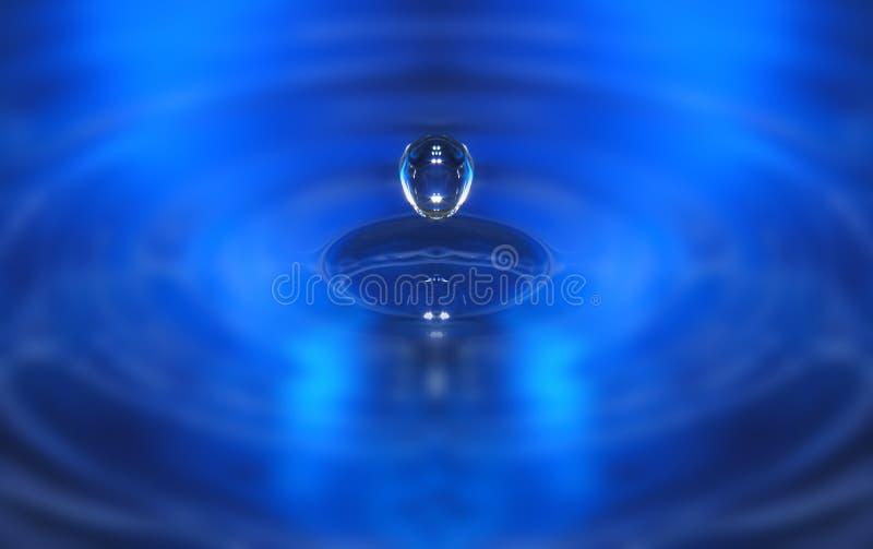 Download Wodnym świecie zdjęcie stock. Obraz złożonej z czysty, bezpłatny - 127396