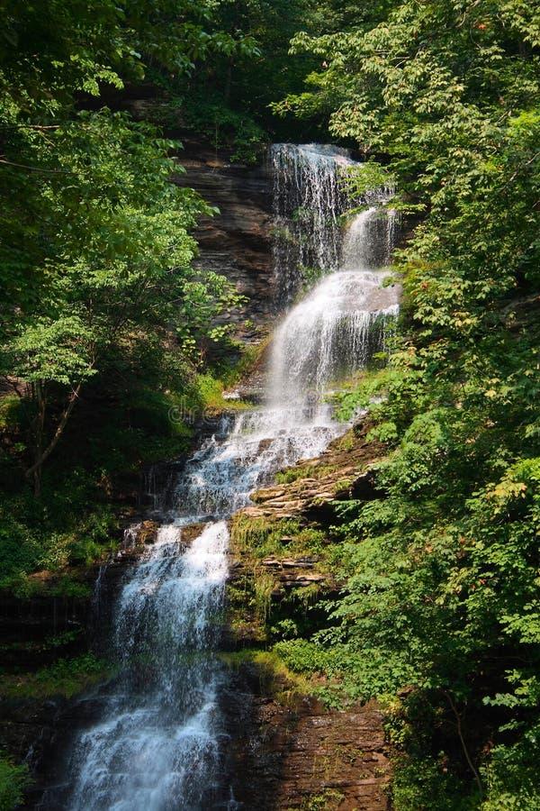 wodospad gually zdjęcie royalty free