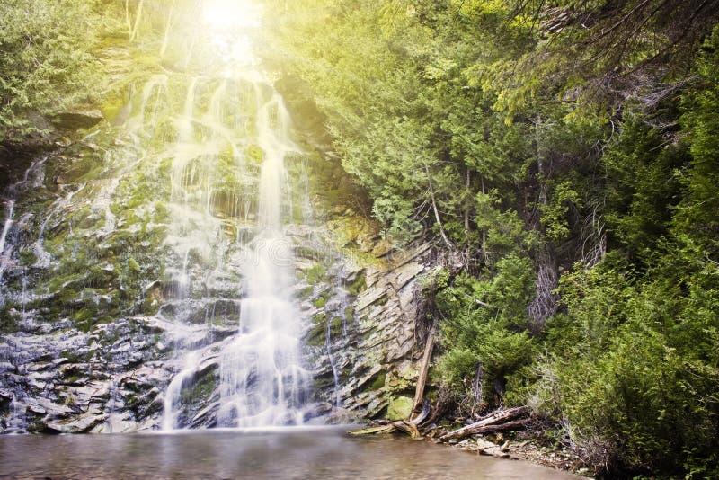wodospad leśna obraz stock