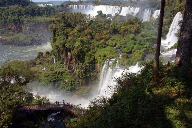 Wodospad rzeki Iguazu między Argentyną a Brazylią zdjęcie stock