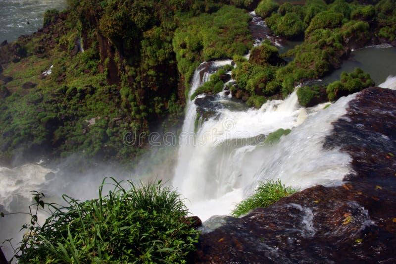 Wodospad rzeki Iguazu między Argentyną a Brazylią zdjęcie royalty free