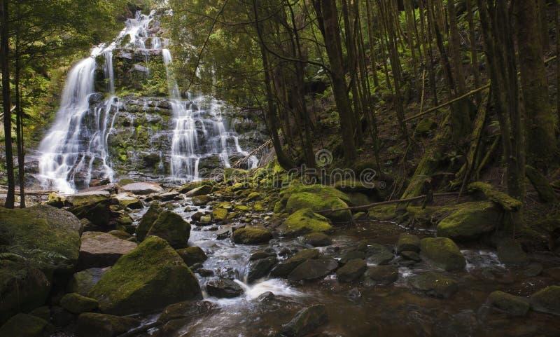 wodospad się kaskadą obrazy royalty free