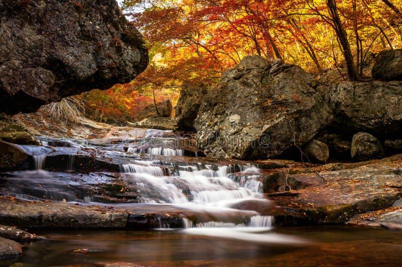 wodospad się kaskadą fotografia stock