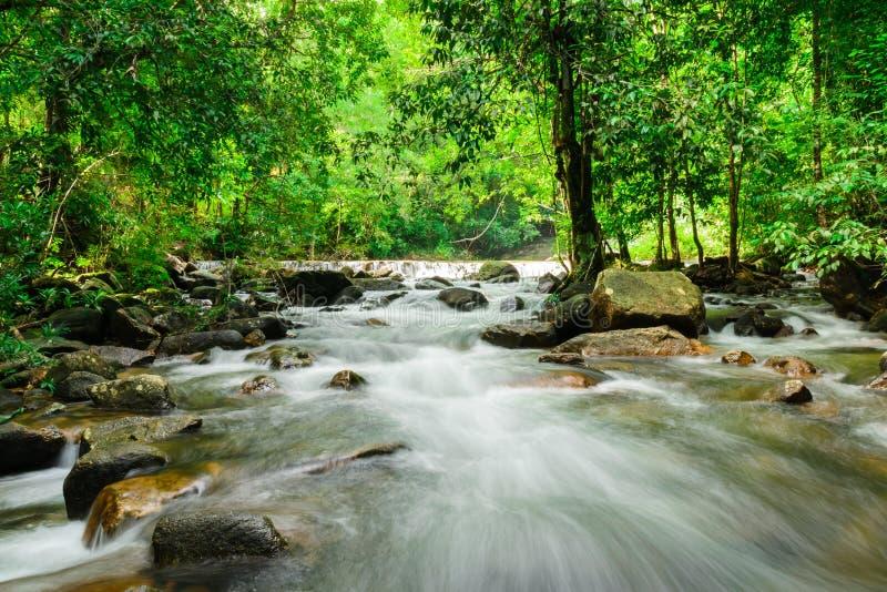 wodospad thailand zdjęcie royalty free