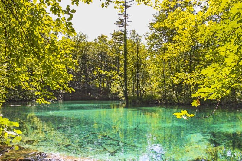 Wody Obniżać jeziora obraz stock