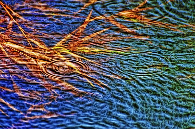 Wody powodziowej pokrywy rośliny przelewa się strumień fotografia royalty free