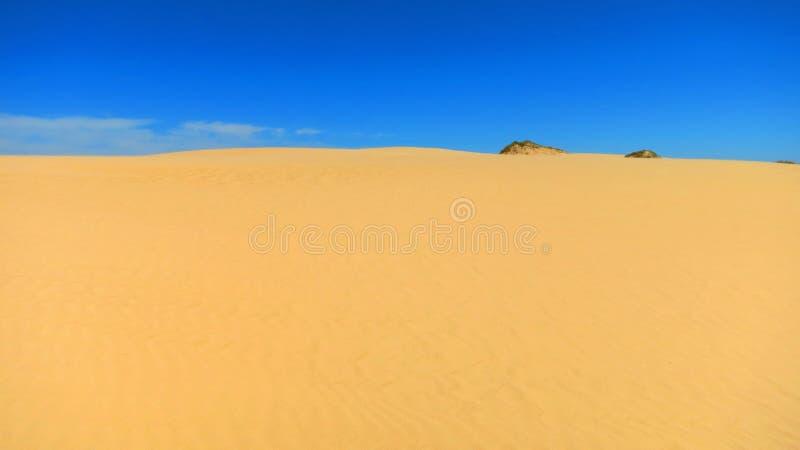 Woestijn in Australië stock afbeelding